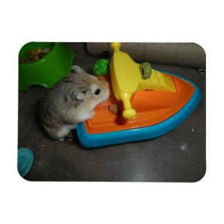 Hamster on a Jet-ski Magnet