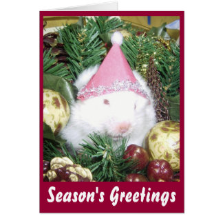Hamster Season's Greetings Card