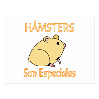 Hamsters Son Especiales Postcard