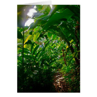 Hana Cabana Foliage Card