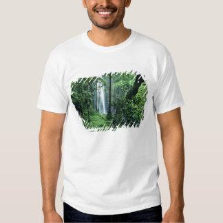 Hanakapiai Falls along the Na Pali Coast, Kauai, T Shirt