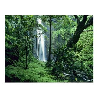 Hanakapiai tombe le long de la côte de Na Pali, Cartes Postales