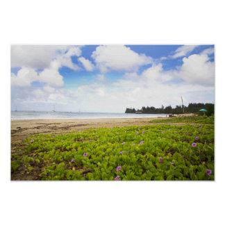 Hanalei Bay, Kauai Hawaii Beach Flowers Poster