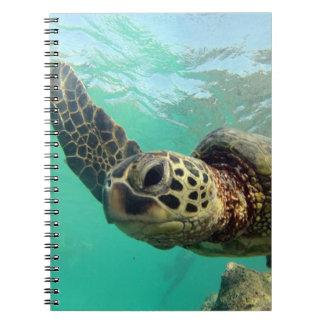 Hanauma Bay Hawaii Turtle Notebook