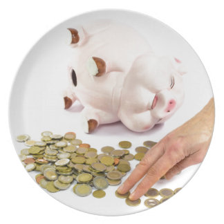 Hand counting euro coins from piggy bank party plate
