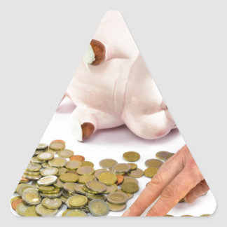 Hand counting euro coins from piggy bank triangle sticker