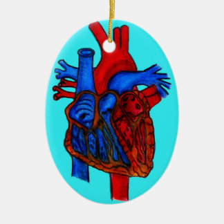 Hand Drawn Aqua Anatomical Heart Ceramic Oval Ornament