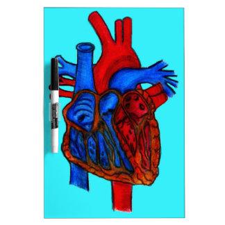 Hand Drawn Aqua Anatomical Heart Dry-Erase Whiteboard