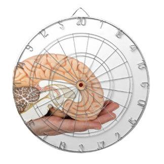 Hand holding brain hemisphere on white background dartboard