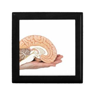 Hand holding brain hemisphere on white background gift box
