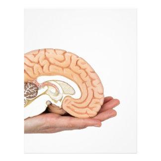 Hand holding brain hemisphere on white background letterhead
