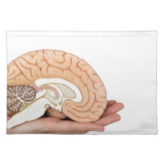 Hand holding brain hemisphere on white background placemat