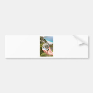 Hand holding crystal ball near sea and mountain bumper sticker
