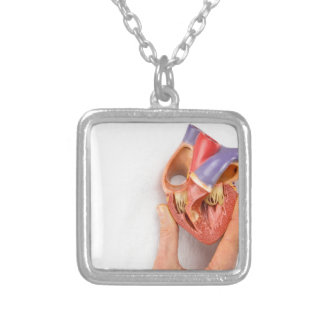 Hand holding heart model in front of chest silver plated necklace