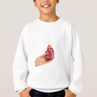 Hand holding kidney model on white background sweatshirt