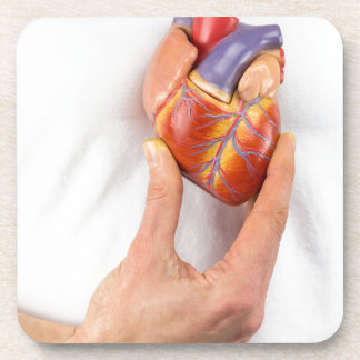 Hand holding model heart on chest coaster
