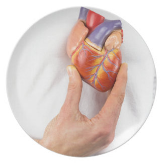 Hand holding model heart on chest dinner plates