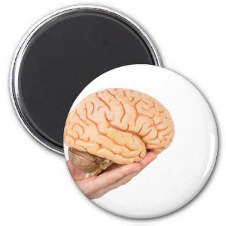 Hand holding model human brains isolated on white 2 inch round magnet
