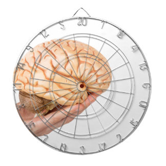Hand holding model human brains isolated on white dartboards