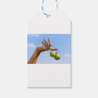 Hand holding two hanging green pears in blue sky gift tags