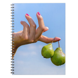 Hand holding two hanging green pears in blue sky notebooks