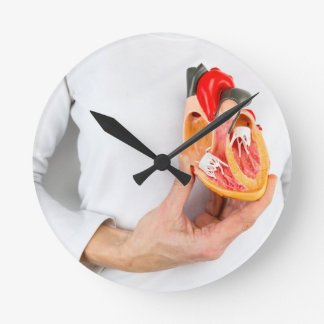 Hand holds human heart model at body clock