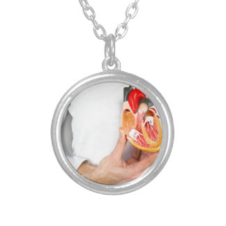Hand holds human heart model at body silver plated necklace