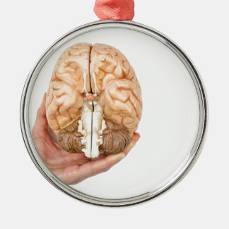 Hand holds model human brain on white background metal ornament