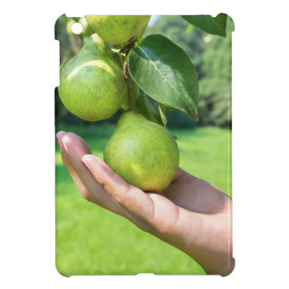 Hand showing branch with hanging green pears iPad mini cover