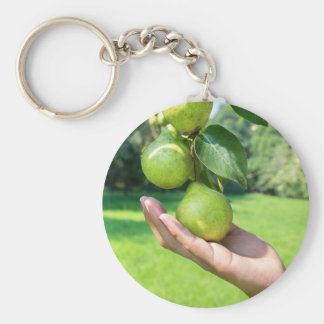 Hand showing branch with hanging green pears keychain