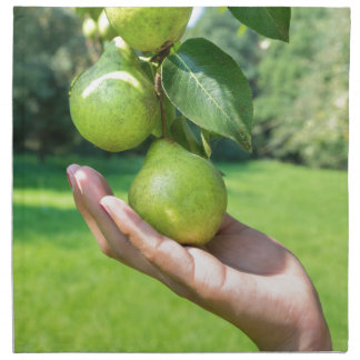 Hand showing branch with hanging green pears napkin