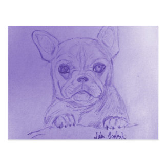 Hand Sketched French Bulldog on Blue Postcard