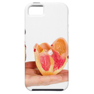 Hand with human heart model on white background.jp iPhone 5 covers