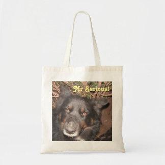 Handbag Husky Collie Cross