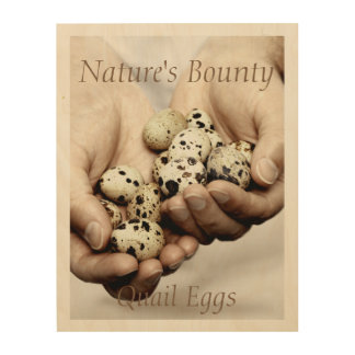 Handful of Quail Eggs. Nature's Bounty Wood Wall Decor