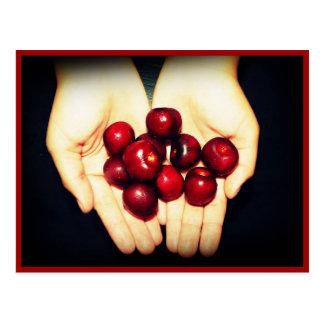 Handful of Ripe Cherries Postcard