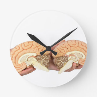 Hands holding model human brain on white clocks