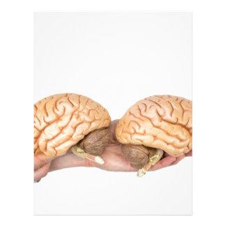 Hands holding model human brain on white letterhead