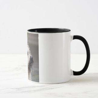 Handsome boy mug