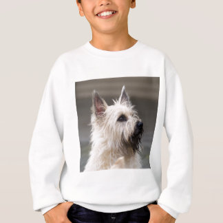 Handsome boy sweatshirt