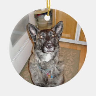 Handsome Dog Ornament