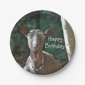 Handsome Goat Paper Plate