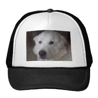 Handsome Great Pyrenees Dog Trucker Hat