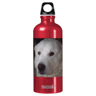 Handsome Great Pyrenees Dog Water Bottle