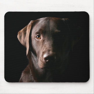 Handsome Labrador Retriever Mouse Pad
