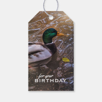 Handsome Mallard Duck Birthday Gift Tags Pack Of Gift Tags