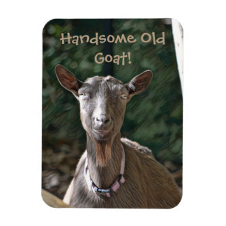 Handsome Old Goat Magnet