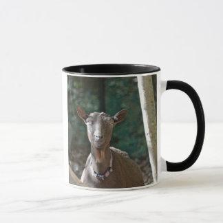 Handsome Old Goat Mug