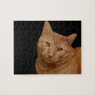 Handsome Orange Tiger Cat Jigsaw Puzzle