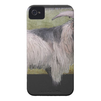 Handsome pygmy goat iPhone 4 cover